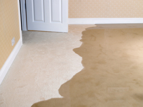how to get rid of carpet odor from water damage